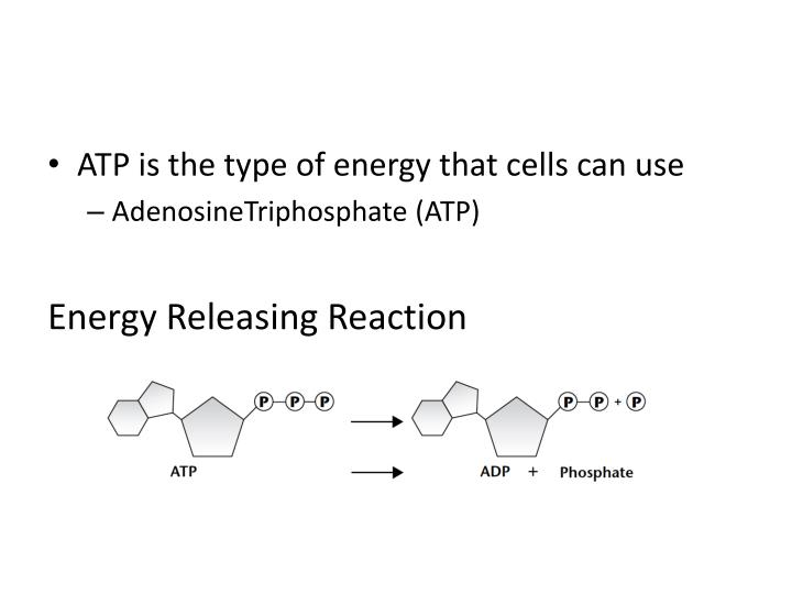 ATP is the type of energy that cells can use