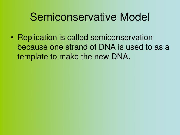 Semiconservative Model