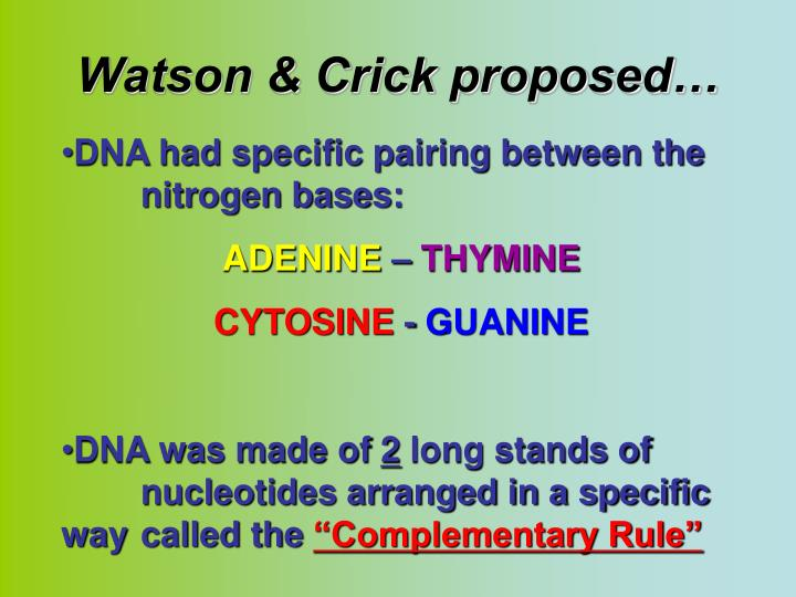 Watson & Crick proposed…