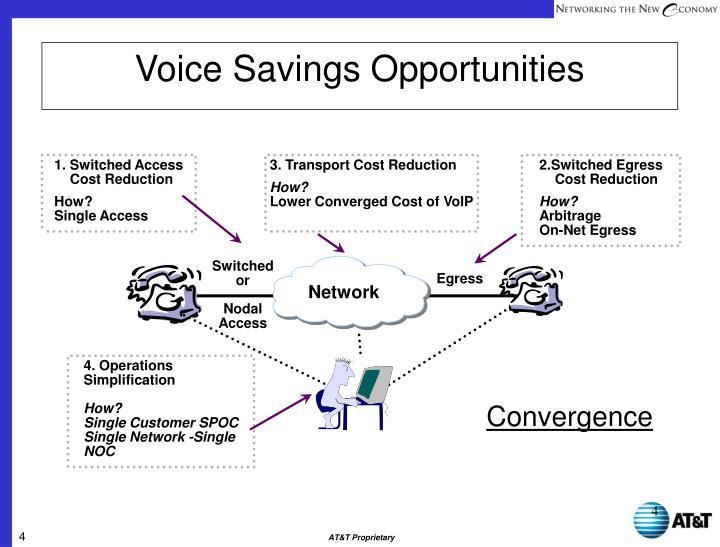 Voice Savings Opportunities