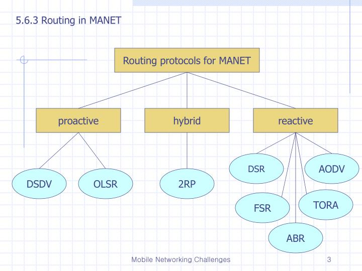 5.6.3 Routing in MANET
