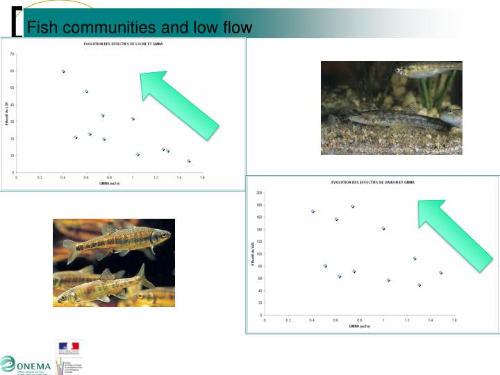 Fish communities and low flow