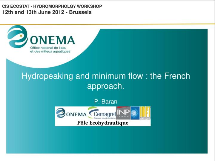 Hydropeaking and minimum flow the french approach p baran