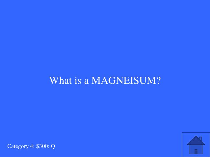 What is a MAGNEISUM?