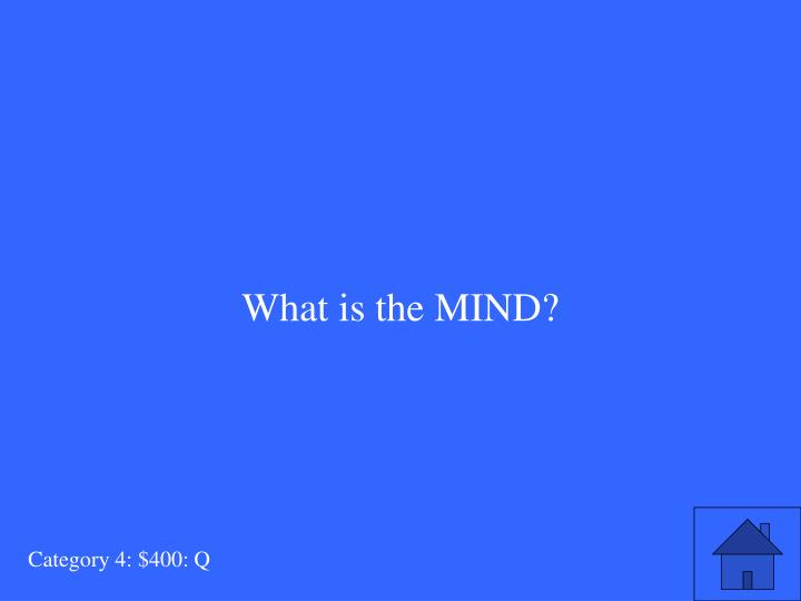 What is the MIND?