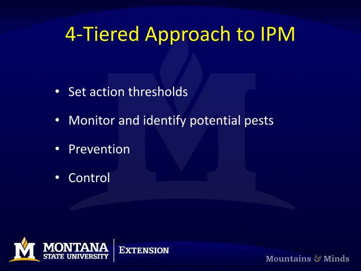 4-Tiered Approach to IPM