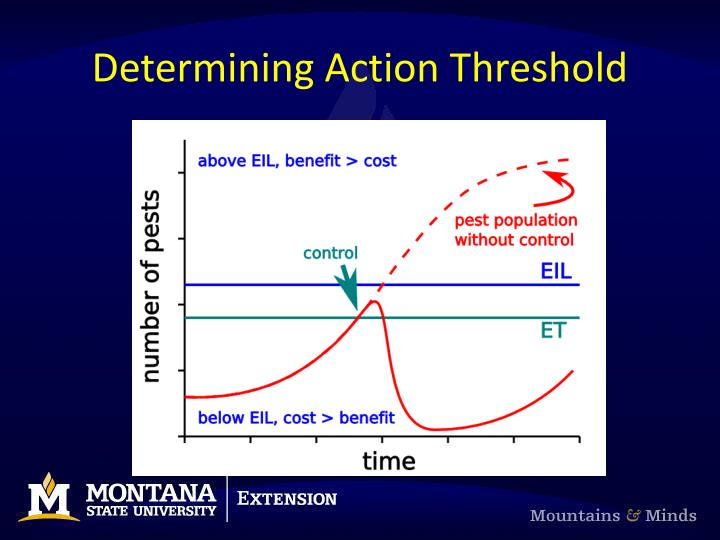 Determining Action Threshold
