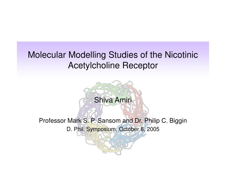 molecular modelling studies of the nicotinic acetylcholine receptor