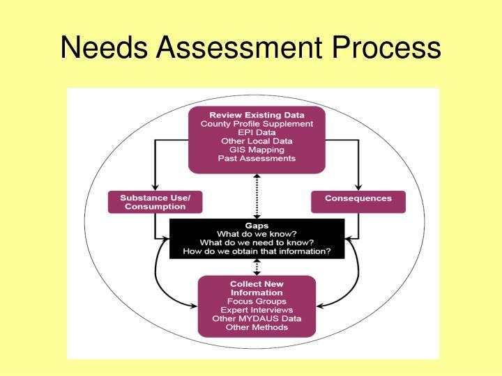 Needs Assessment Process