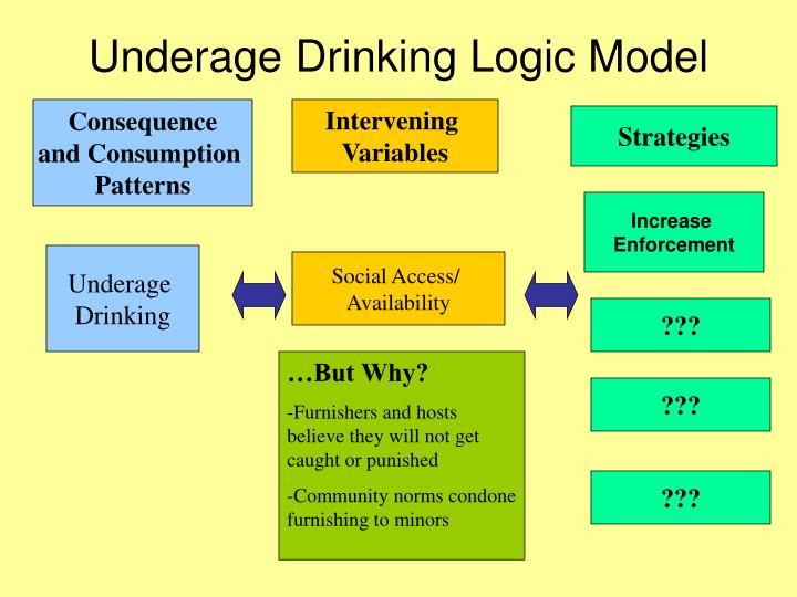 Underage Drinking Logic Model