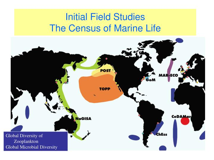 Initial field studies the census of marine life