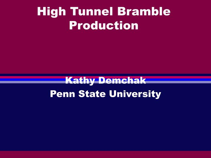 High tunnel bramble production