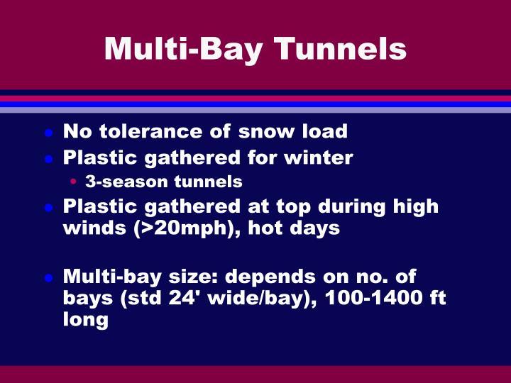 Multi-Bay Tunnels
