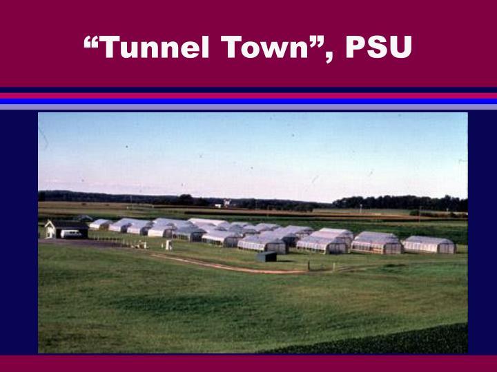 """Tunnel Town"", PSU"