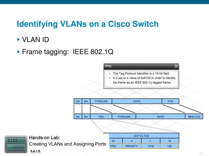 Identifying VLANs on a Cisco Switch