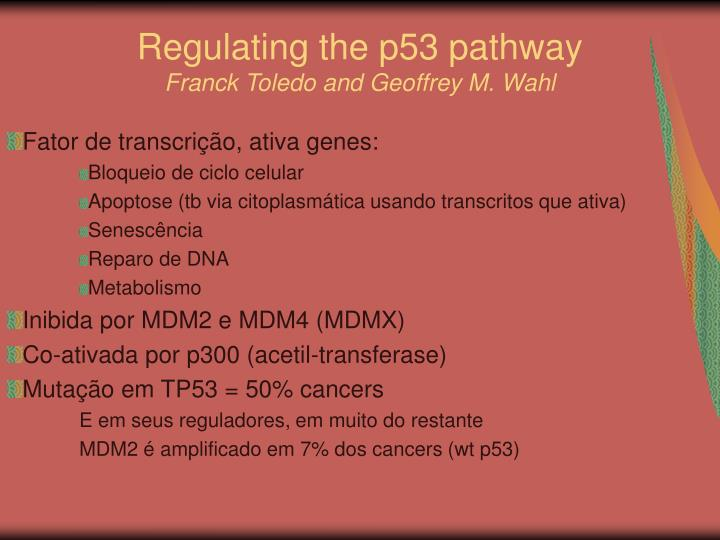 Regulating the p53 pathway franck toledo and geoffrey m wahl