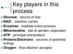 key players in this process