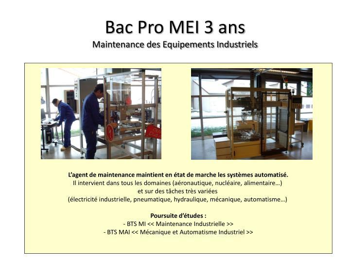 Bac Pro MEI 3 ans
