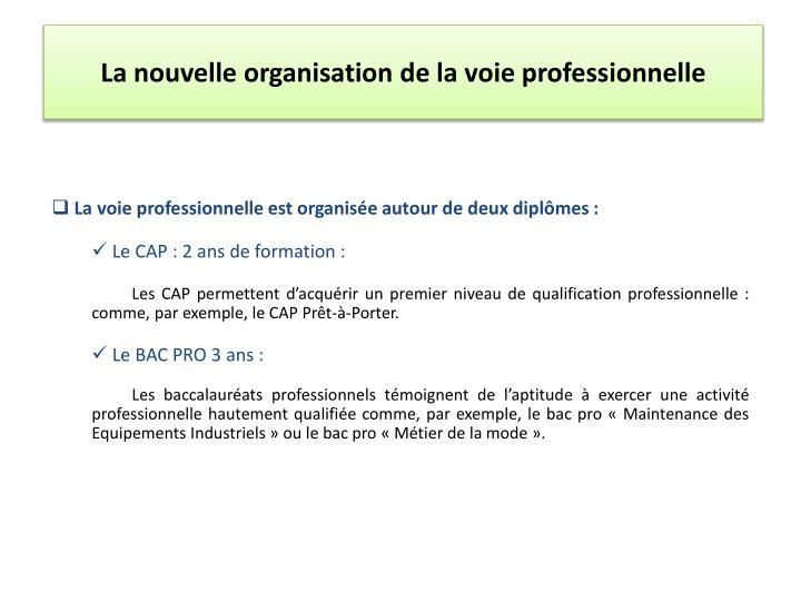 La nouvelle organisation de la voie professionnelle