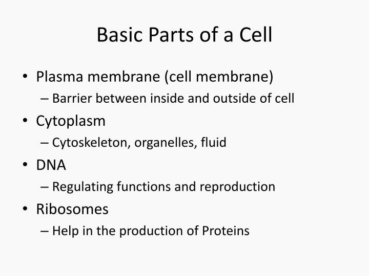 Basic Parts of a Cell