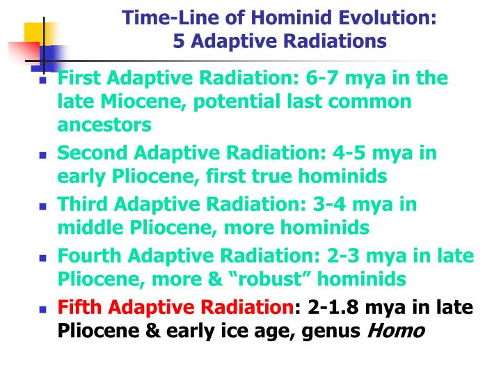 Time line of hominid evolution 5 adaptive radiations
