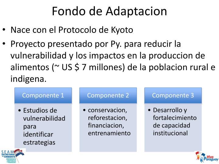 Fondo de Adaptacion