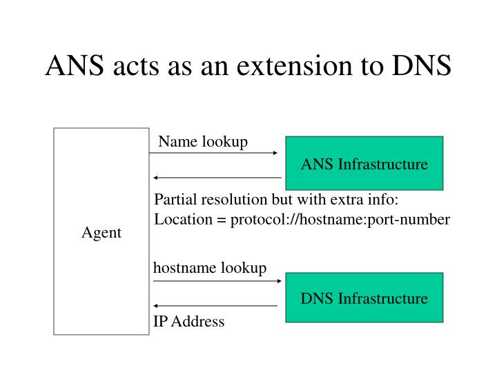 ANS acts as an extension to DNS