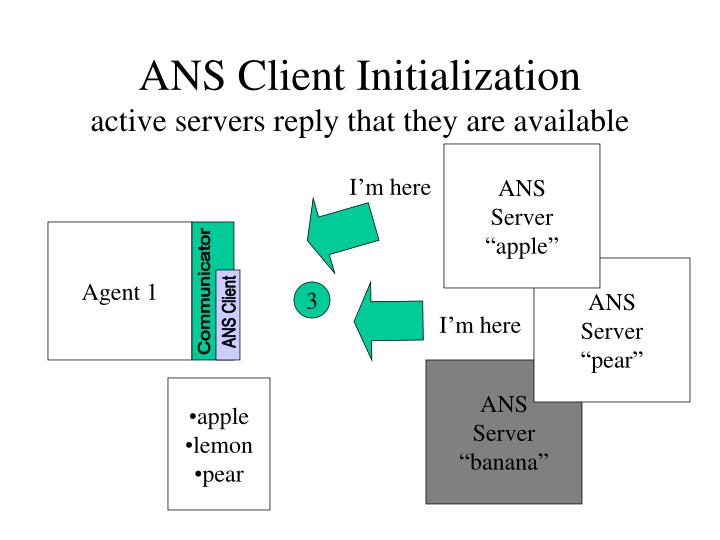 ANS Client Initialization