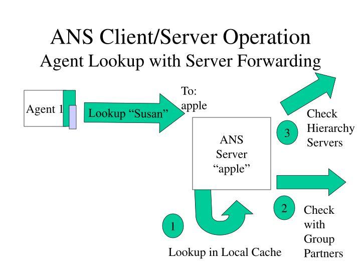 ANS Client/Server Operation