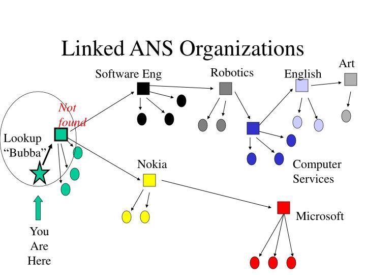 Linked ANS Organizations
