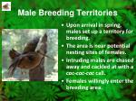 male breeding territories