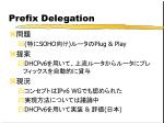 prefix delegation