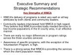 executive summary and strategic recommendations14