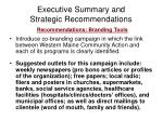 executive summary and strategic recommendations17