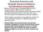 executive summary and strategic recommendations19