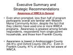 executive summary and strategic recommendations2