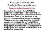executive summary and strategic recommendations20
