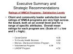 executive summary and strategic recommendations4