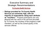 executive summary and strategic recommendations6
