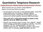 quantitative telephone research46
