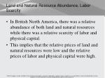 land and natural resource abundance labor scarcity