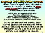 slave laws