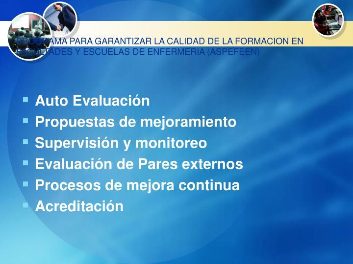 PROGRAMA PARA GARANTIZAR LA CALIDAD DE LA FORMACION EN FACULTADES Y ESCUELAS DE ENFERMERIA (ASPEFEEN)