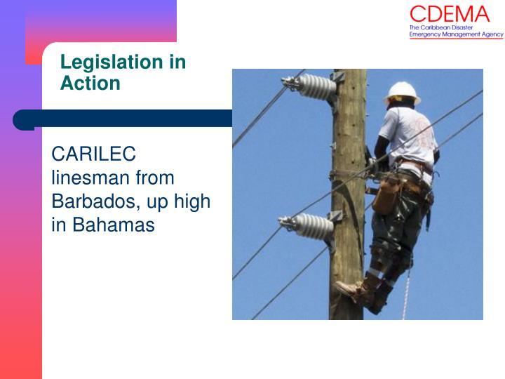 Legislation in Action