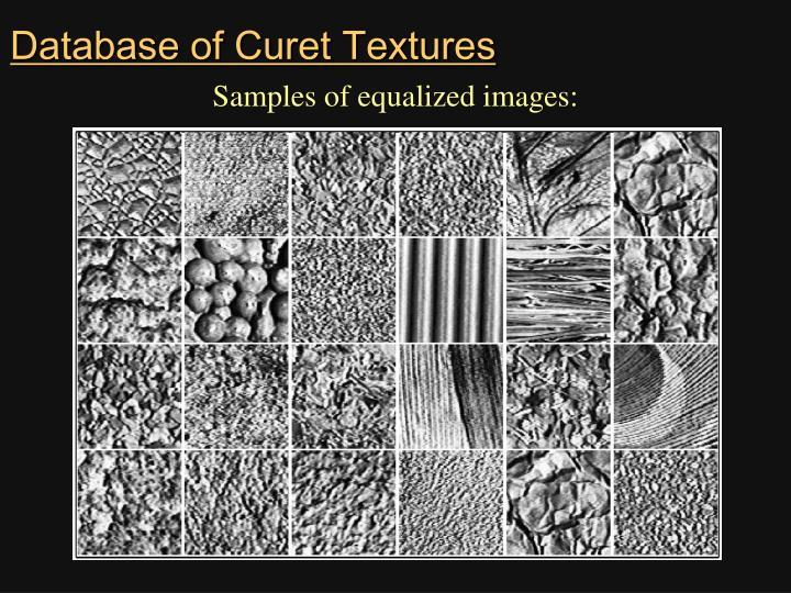 Database of Curet Textures