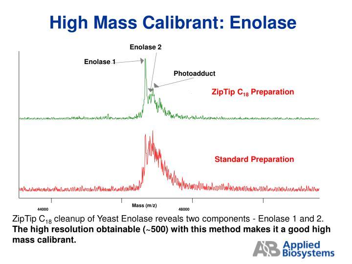 High Mass Calibrant: Enolase