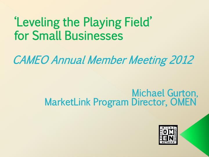 Leveling the playing field for small businesses