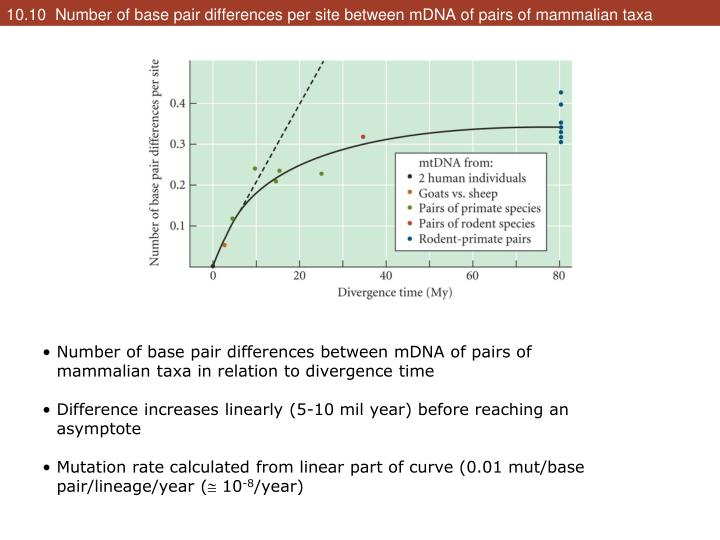10.10  Number of base pair differences per site between mDNA of pairs of mammalian taxa