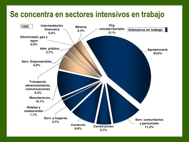Se concentra en sectores intensivos en trabajo