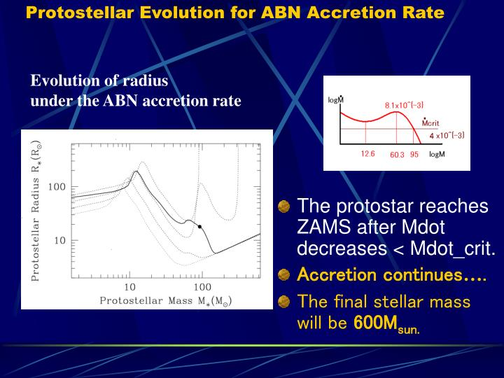 Protostellar Evolution for ABN Accretion Rate